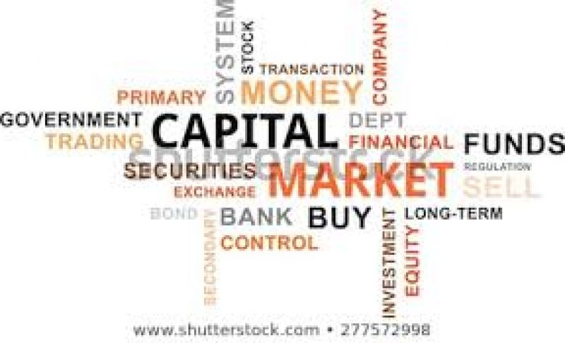 BMS Capital Market (BCM) Ordinance No. 6392