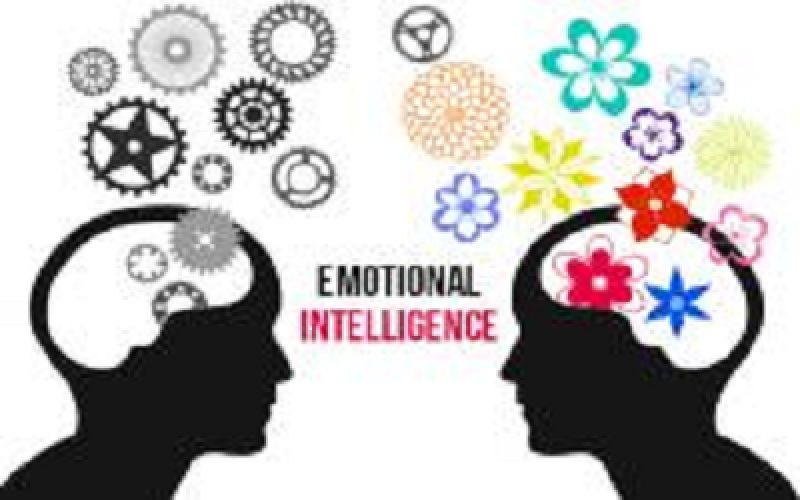 M.A. Emotional Intelligence & Human Relations (MEI&HR) Ordinance No. 6376